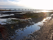 Marées sur l'Ile d'Oléron