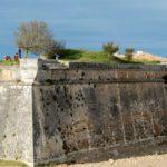 La Citadelle et l'arbre de Richelieu