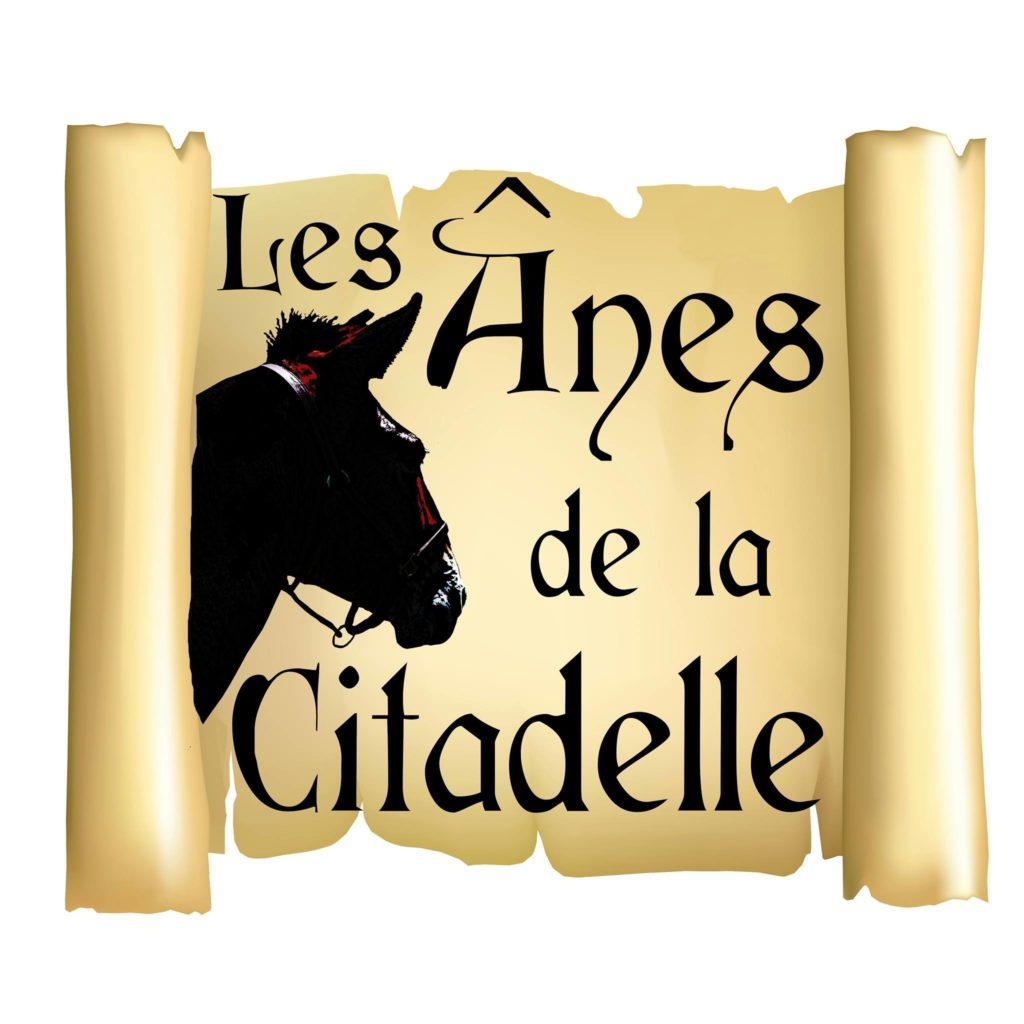 Les ânes de la Citadelle